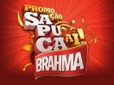 Que tal curtir o Carnaval do RJ no Camarote VIP da Brahma?